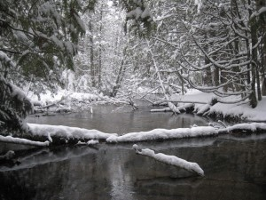 cedar creek winter